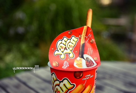 iconic asian snacks yan yan