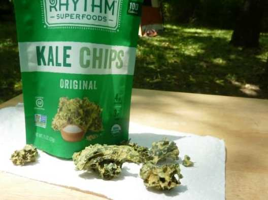 best travel friendly snacks kale chips